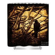 Messenger Shower Curtain by Andrew Paranavitana
