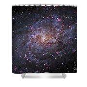 Messier 33, Spiral Galaxy In Triangulum Shower Curtain by Robert Gendler