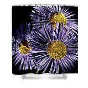 Metallic Daisies Shower Curtain