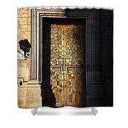 Mexican Door 21 Shower Curtain