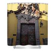 Mexican Door 28 Shower Curtain