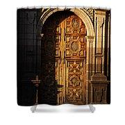 Mexican Door 31 Shower Curtain