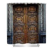 Mexican Door 4 Shower Curtain