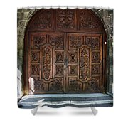 Mexican Door 47 Shower Curtain