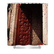 Mexican Door 49 Shower Curtain