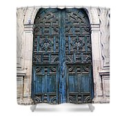 Mexican Door 6 Shower Curtain