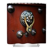 Mexican Door Decor 14  Shower Curtain