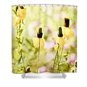 Mexican Hat In Yellow Shower Curtain