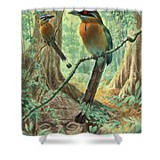 Mexican Motmots Are Perched On Jungle Shower Curtain
