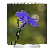 Mexican Petunia Shower Curtain