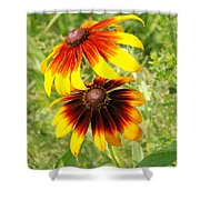 Mexican Sunflowers 2 Shower Curtain