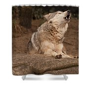Mexican Wolf Howling Shower Curtain