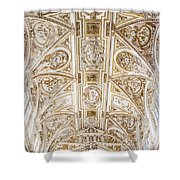 Mezquita Cathedral Ceiling Shower Curtain