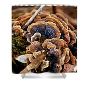 Michigan Fungus Shower Curtain