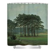 Midday Shower Curtain