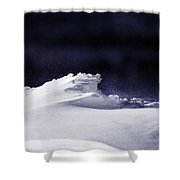 Midnight In January Shower Curtain by Susan Capuano