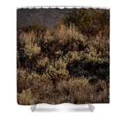Midnight Sage Brush Shower Curtain