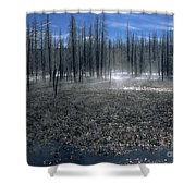 Midway Geyser Area Shower Curtain