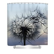 Wind Blown 1 Shower Curtain