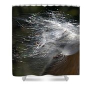 Milkweed I Shower Curtain