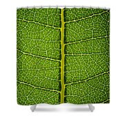 Milkweed Leaf Shower Curtain