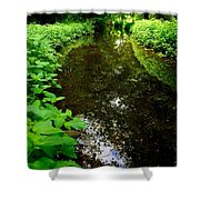 Mill Pond Stream In Green Shower Curtain