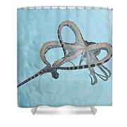 Mimic Octopus Parachuting Down, North Shower Curtain