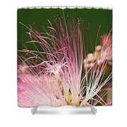 Mimosa And Worm Shower Curtain