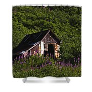 Miners Cabin Shower Curtain