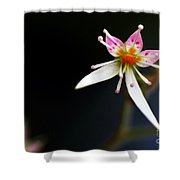 Mini Cactus Flower Shower Curtain