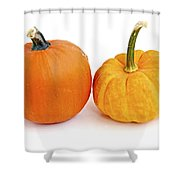 Mini Pumpkins Shower Curtain by Elena Elisseeva