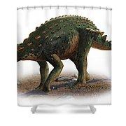 Minmi Paravertebra, A Prehistoric Era Shower Curtain