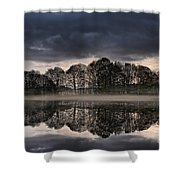 Mirrored Trees Shower Curtain