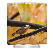 Mission Possible Shower Curtain