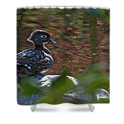 Missy Wood Duck Shower Curtain