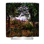 Mist Beyond The Apple Trees Shower Curtain