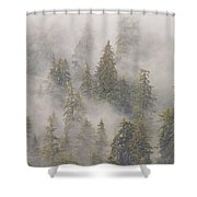 Mist In Tongass National Forest Shower Curtain