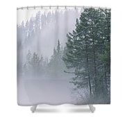 Mist Rises From An Evergreen Forest Shower Curtain
