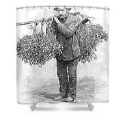 Mistletoe Gatherer, 1894 Shower Curtain