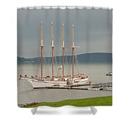 Misty Afternoon Shower Curtain