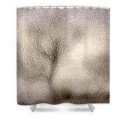 Misty Dreams Shower Curtain