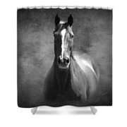 Misty In The Moonlight Bw Shower Curtain