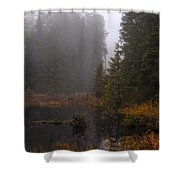 Misty Solitude Shower Curtain