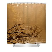 Misty Sunbeams Shower Curtain