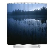 Misty View Of Taiga Forest Shower Curtain