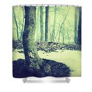 Misty Winter Woods Shower Curtain