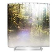 Misty Woods Shower Curtain