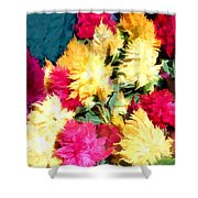 Mixed Celosias In Fall Colors Shower Curtain