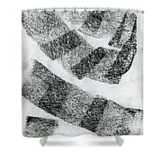 Mixed Roads Shower Curtain