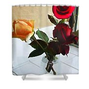 Mixed Roses In Crystal Vase Shower Curtain